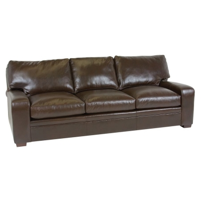 Classic Leather 4513 Leather Sofa Vancouver Sofa Discount Furniture at Hickory Park Furniture