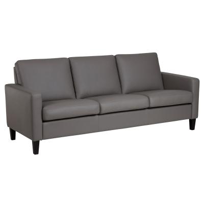 IMG Leather Comfort Sofa